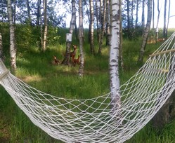 Příjemné prostředí na samotě